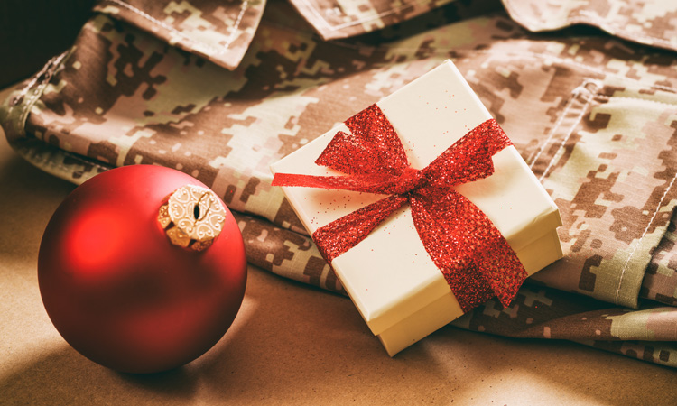 This Holiday Season, Support a Veteran in Need with Your Time, Gifts and Thoughts